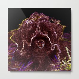 Abstract Portuguese Water Dog Metal Print