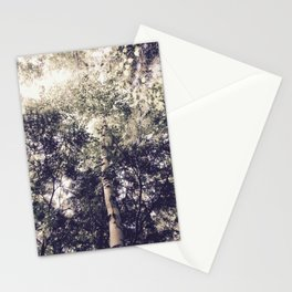 Dappled Light Filtered Through Trees Stationery Cards