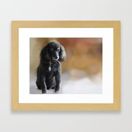 The old guy Framed Art Print