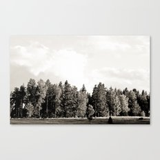 Trees in a line Canvas Print