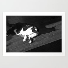 Relaxing Cat Art Print