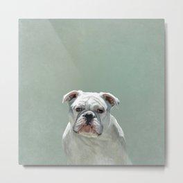 BILL the Bulldog Metal Print