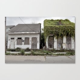 Living Roof - New Orleans, Louisiana Canvas Print
