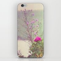 cape cod iPhone & iPod Skins featuring Cape Cod by Antha P