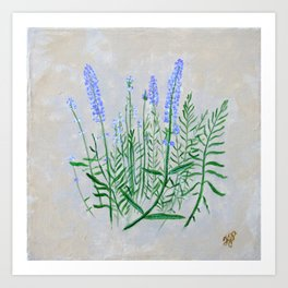 Lavender Plant Grows in the Garden Art Print