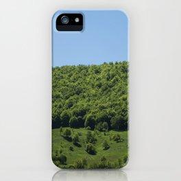 Blue+green iPhone Case