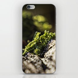 Mose Februar 2016 iPhone Skin