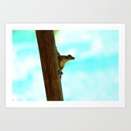 Toadally Awesome Art Print