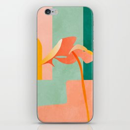 tropical geometry iPhone Skin
