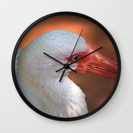 White Ibis - Grand Cayman Wall Clock