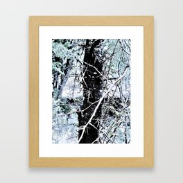Honey Locust Framed Art Print