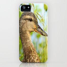 Wild Duck Portrait Nature Background #decor #society6 #buyart iPhone Case