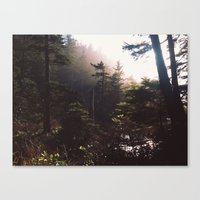 forrest Canvas Prints featuring Forrest by The Beard Fairmans