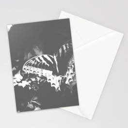 Faded Butterfly Graphite Stationery Cards