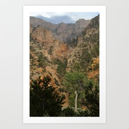 Pine Creek, Dixie National Forest Art Print