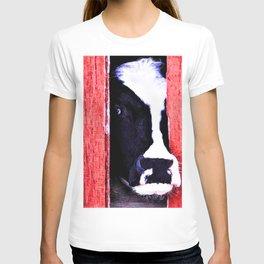 Black and White Cow Peeking thru the Red Barn Door T-shirt
