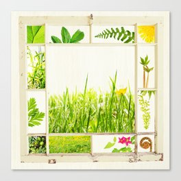 Spring window sampler Canvas Print