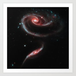 Rose of Galaxies Art Print