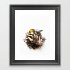 Empty Nest Framed Art Print