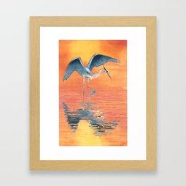 Blue Heron dance Framed Art Print