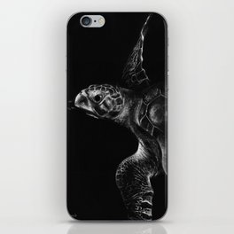 Olive Ridley Turtle iPhone Skin