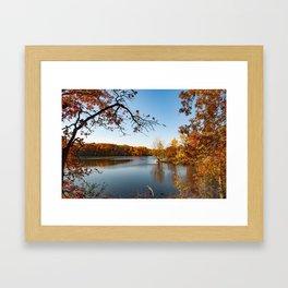 Through the Leaves Framed Art Print