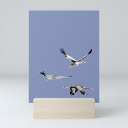 Brolga (Grus rubicunda) Mini Art Print