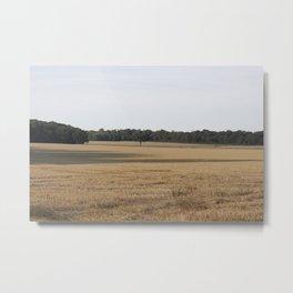 English Field of Wheat in Summer Metal Print