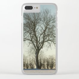 Winter tree in the low sun Clear iPhone Case