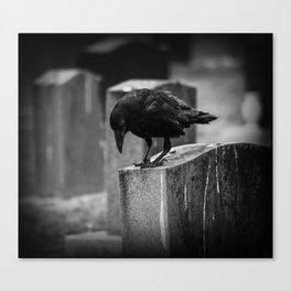 Cemetery Crow Canvas Print