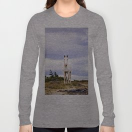 White horse, Torres Del Paine Long Sleeve T-shirt