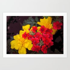 French Marigolds & Verbena Art Print