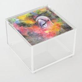 Nebula Cacatuidae Acrylic Box