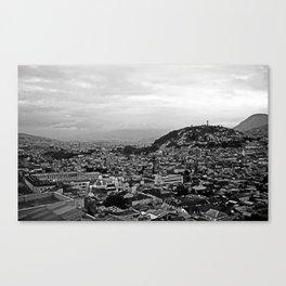 # 317 Canvas Print