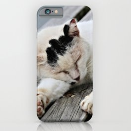 Cat Dreaming iPhone Case