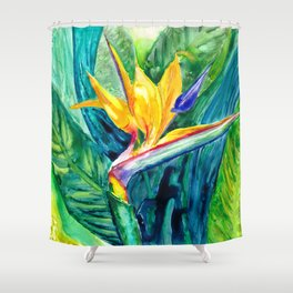 Bird of Paradise Watercolor Shower Curtain
