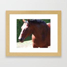 Priceless Mischief Framed Art Print
