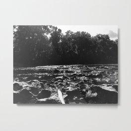 IMG 0137 Metal Print