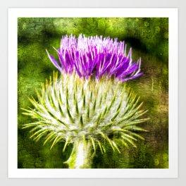 Flower of Scotland Oil Paint effect. Art Print