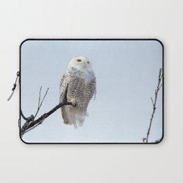 Lofty Vision (Snowy Owl) Laptop Sleeve