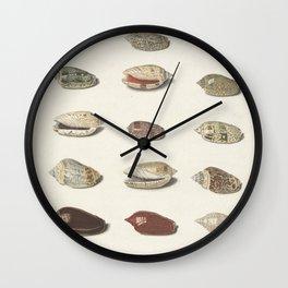 Vintage Seashell Chart III Wall Clock