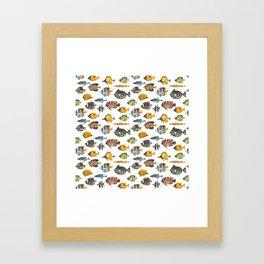School of Tropical Fish Framed Art Print
