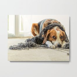 A Beagle dog is tangled up in a big ball of yarn. Metal Print