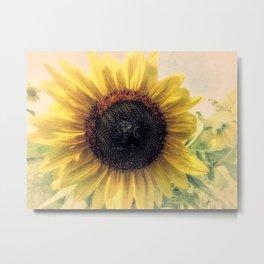 Sunflower Flower Modern Country Home Decor Cottage Art A421b Metal Print