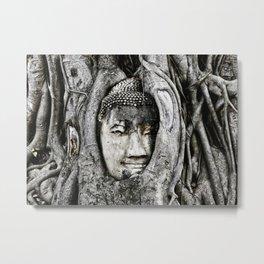 Buddha head entwined in Banyan tree roots. Metal Print