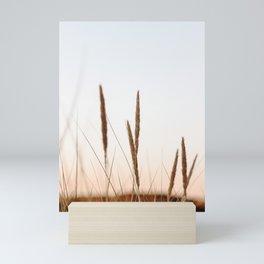 Beach grass II   Calm natural fine art print   Netherlands Mini Art Print