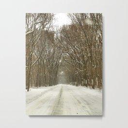 Snowy Path At Point Pele Metal Print