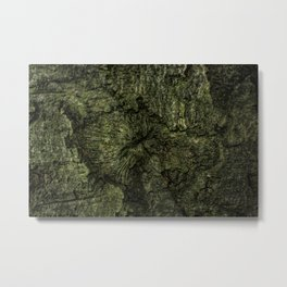 The Attractive Crevice Metal Print
