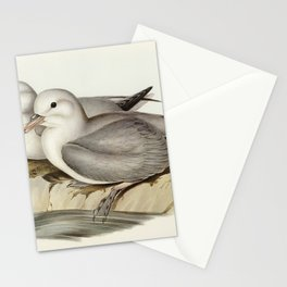 Silvery Grey Petrel (Procellaria Glacialoides) illustrated by Elizabeth Gould (1804–1841) for John G Stationery Cards