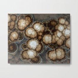 Earth treasures - brown jaspis Metal Print